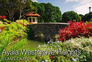 Ayala Westgrove Heights